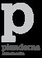 logo Pianderna